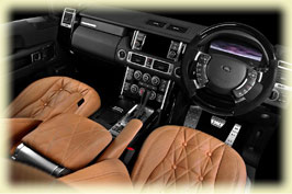 Wood Dash Trim